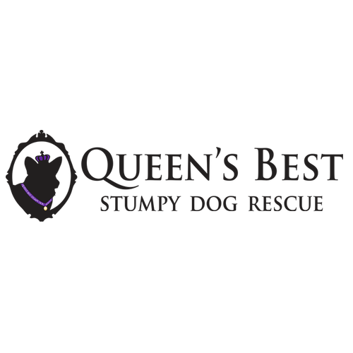 Queen's Best Stumpy Dog Rescue
